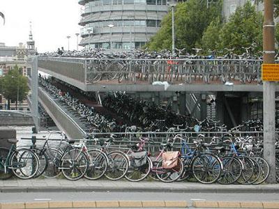 Inaugura cinemambiente i gorilla amano la bicicletta for Affitto bici amsterdam
